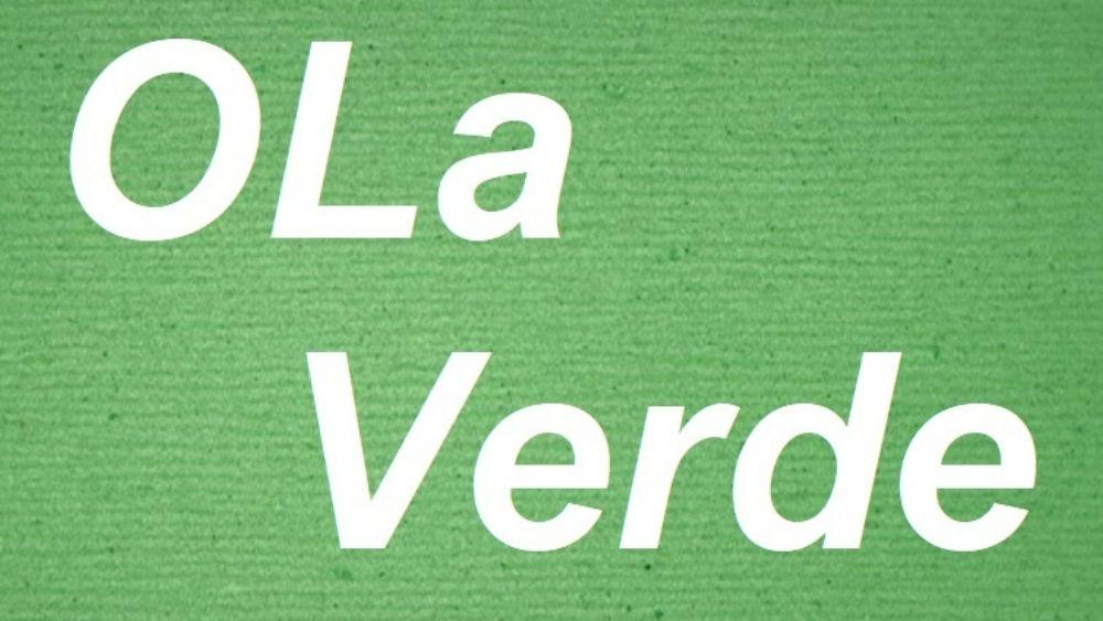 Imagen con texto Ola Verde