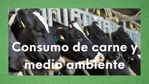 Imagen sobre consumo de carne y medio ambiente