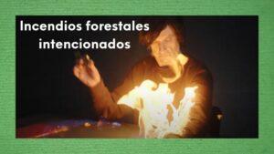 Imagen hombre ardiendo simulación incendios forestales intencionados